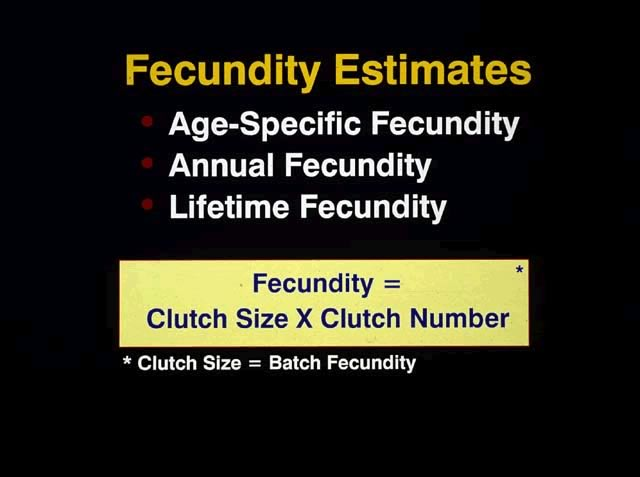 Fecundity estimates